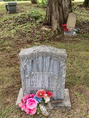 Safe in the Arms (jwcjr) Tags: grave gravemarker notlabaptistchurchcemetery notlacemetery notlachurchcemetery murphync murphynorthcarolina molliepwelch molliepricejones