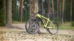 On-One 456 Carbon (dbl_foto) Tags: onone 456 nex6 lensturbo nikkorais50f14 pinesneedles tatarstan russia 2016 sony