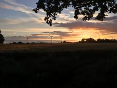 Sun and Wind (maxmlucas) Tags: sunset england sky field evening countryside suffolk dusk orangesky windturbine windturbines eveningsunset summersunset yellowsky