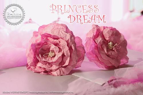 Braham-Wedding-Concept-Portfolio-Princess-Dream-1920x1280-12
