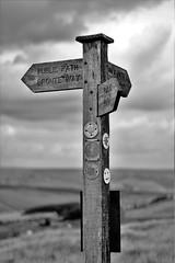 IMG_2127 (2) (KittyGuru) Tags: sign posts millenium way moorland