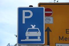 Parken fr Eichhrnchen erlaubt (julia_HalleFotoFan) Tags: hallesaale schilder verkehrsschilder schilderguerilla streetart