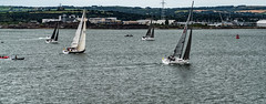 SAILING AND BOATS IN CORK HARBOUR [PHOTOGRAPHED FROM COBH]-118837 (infomatique) Tags: cobh sailing boating boats corkharbour ireland europe streetphotography williammurphy zozimuz infomatique sonya7rm2 fotonique july 2016 harbour harbor