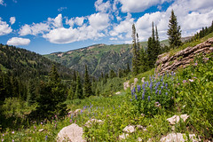Darby Canyon (AnitaBurke1) Tags: 2016 anitaburke hike hiking monumenthike outdoors outings darby darbycanyon idaho