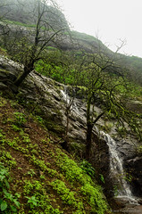 DSC_000 (74) (Praveen Ramavath) Tags: matsyapurana agnipurana skandapurana harishchandragad kalachuridynasty 6thcenturyad khireshwar harishchandreshwar temple kedareshwar shaiva shakta naath shiva siva cave pillars four konkankada konkan cliff ganapathi india maharastra hindu culture