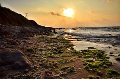#sunset #water #beach #sea #landscape #ocean #dawn #seashore #nature #sun #sky #evening #seascape #travel #dusk #sand #surf #turkey #sinop (canerryilmazzz) Tags: sunset water beach sea landscape ocean dawn seashore nature sun sky evening seascape travel dusk sand surf turkey sinop