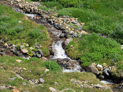 Waterfall at Skyline Trail at Mt. Rainier NP in WA (Landscapes in The West) Tags: mtrainiernationalpark washington pacificnorthwest skylinetrail paradise waterfall