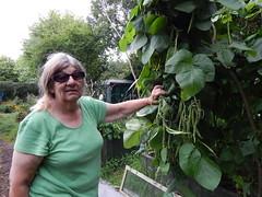 DSCN4593 (joonseviltwin) Tags: cardiff roath mackintosh community garden