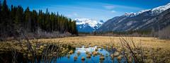 Banff National Park (Brenda Lindal) Tags: park canada mountains rockies parks rocky canadian national alberta banff