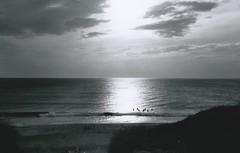 Strand (Turikan) Tags: beach denmark mju urlaub olympus 100 apx agfaphoto