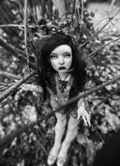 Calamity Cal' ((old account) Koala Krash) Tags: white black art nature ball dark french doll artist sad body cartoon makeup koala bjd brunette custom manon custo krash artiste poupée jointed française lillycat dojy cerisedolls cerisedoll darkdojy