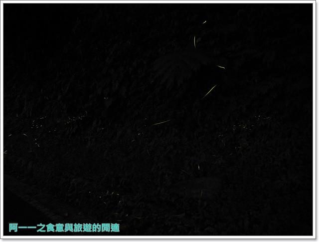 花蓮鯉魚潭螢火蟲賞蝴蝶青陽農場攝影花蓮旅遊image034