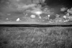 IMG_5789 (Robi Fav) Tags: ocean sky costa green castle clouds landscape scotland highlands nuvole nuvola north atlantic highland cielo campo castello spiaggia paesaggio oceano scozia thurso allaperto bagnasciuga