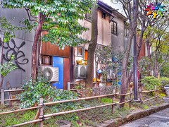 Spring in Tokyo=24=Golden Gai (tiokliaw) Tags: world city trees friends plants holiday reflection travelling green beautiful beauty japan digital photoshop buildings wonderful garden tokyo interesting fantastic nikon scenery holidays colours exercise earth expression object awesome perspective entrance images explore walkway winner greatshot historical imagination sensational digitalcamera recreation greetings colourful discovery hdr finest overview creations excellence addon highquality inyoureyes teamworks digitalcameraclub supershot recreaction hellobuddy mywinners mywinner worldbest anawesomeshot colorphotoaward aplusphoto flickraward almostanything goldstaraward thebestofday flickrlovers nikonflickraward sensationalcreations blinkagain burtalshot