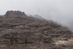 Summit of Roraima tepui (David Ascanio (VENT & Ascanio Birding Tours)) Tags: trip david expedition nature venezuela birding victor desiree tours endemic emanuel orinoco tepui starke ascanio pantepui abtbirds ventbird