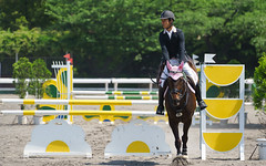(hatsunica) Tags: horse riding equestrian horsebackriding horseriding showjumping   equestrianism