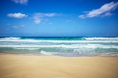 DSC_2662 (juor2) Tags: wave d600 nikon scene northshore hawaii america beach sea sand blue sky