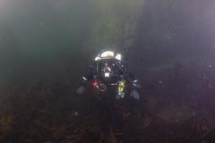 20160803-Eyemouth11 (Dacmirc) Tags: eyemouth diving ukdiving rebreather