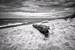 Weathered Beach Driftwood (mswan777) Tags: lake michigan great lakes nature beach ansel bw sand driftwood waves water clouds sky scenic seascape shore landscape nikon d5100 sigma 1020mm snapseed footprints dune