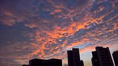 Drama in the sky (SmartFireCat) Tags: sky sunset singapore cielo puesta sol sun clouds nubes drama lumia microsoft lumia950xl