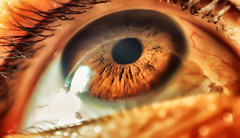 The eye that sees everything (Fabianni Luiz) Tags: iris macro eye colors lens details human pupil cornea