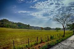Clouds (parivrajaka) Tags: nikon nikond3300 d3300 nikonforever nikonforlife nikontop nikondslrusers nikonphotography hdr hdrphotography hdrpics hdrcaptures landscape sky skyblue skylovers cloudscape cloud horizon wonderful venezuela