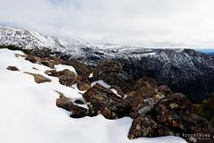 20160807-07-From lookout across to Tarn Shelf and Rodway Range (Roger T Wong) Tags: australia mtfield mtfieldnationalpark np nationalpark rodwayrange sel1635z sony1635 sonya7ii sonyalpha7ii sonyfe1635mmf4zaosscarlzeissvariotessart sonyilce7m2 tarnshelf tasmania bushwalk hike lookout outdoors snow tramp trek walk winter