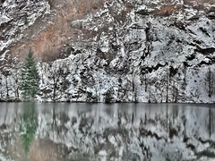Winterly Tristesse at a Quarry Pond 15 (MJWoerner49) Tags: outdoor nature gloominess murkiness rees weather winter ice rocks structure surface reflection cold frosty winterly wintery wintry lake pond pool quarry quarrypond glacial icy