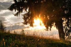Sonnenuntergang in den Bergen (DommyLovesPhotography) Tags: sonnenuntergang berge himmel romantik bayrischzell natur ruhe