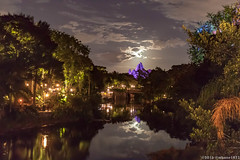 Moonrise over Everest (mbone1973) Tags: moon moonrise rise disney animalkingdom waltdisneyworld everest expeditioneverest rollercoaster themepark