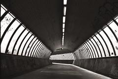 0380AA037 (vtor/covelo) Tags: lisbon black white tunel panf pentax mx analog film portugal shadow urban
