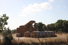 Vendee (VMartineau) Tags: vendee stroh traktor paille tracteur
