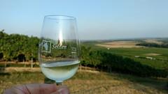 Weindorf Selzen - Weißwein