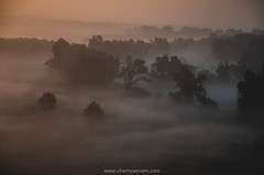 DSC_6760_mini (Maria Chernyaeva) Tags: krasnodar sunrise foggy