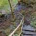 Garmisch - Partnachklamm (10) - Weg oberhalb der Klamm