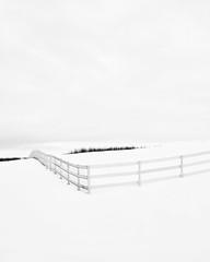 Prairie Winter III (Sandra Herber) Tags: winter snow canada fences alberta highkey prairie minimalism minimalist