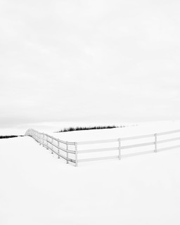 Prairie Winter III