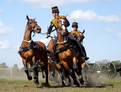 Kings Troop, RHA, Charlton, Apr 2015 (roger.w800) Tags: horses london army military rha britisharmy equestrian equine woolwich charlton selondon southeastlondon royalhorseartillery kingstroop militarydisplay militaryinspection militaryhorses armyhorses militarypageant