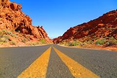 Long Winding Road