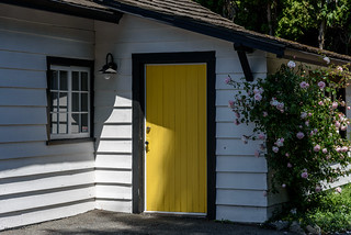 Yellow Door & Roses