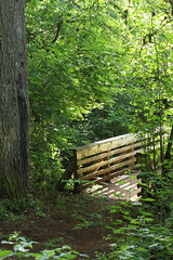 Joryville Park Bridge (briangeerlings) Tags: bridge tree green nature leaves oregon canon salem om zuiko zuiko50mmf18 t1i joryvillecountypark joryville