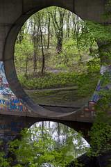 DSC_5808 (kabatskiy) Tags: city bridges cars nature abstracts cats beer