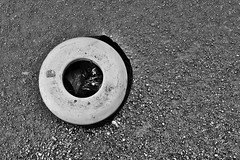 Basura (Shubert Silva) Tags: basura tacho