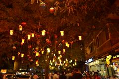 Night Times Short Exposures 1 (ragamuff_in) Tags: night istanbul kadky short exposure tree light
