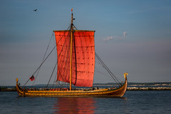 Draken Harald Harfagre (Dale Kincaid) Tags: old sea norway sailboat vintage boat wooden ancient ship dragon vessel medieval historic sail tall mast ropes viking draken harald harfagre