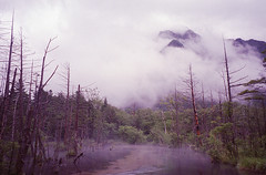 (t_mimizuk) Tags: film contax tvs nature landscape marsh rain cloud kamikochi kamikouchi nagano japan