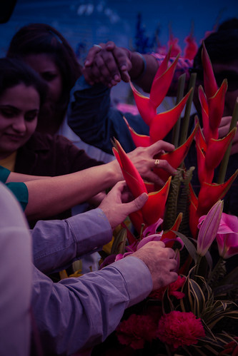 Garden Tourism Festival 2016: All hands met on that ginger flower