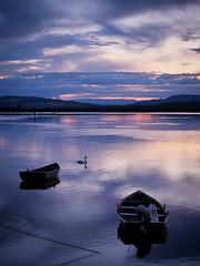 river tay calm-7280777 (E.........'s Diary) Tags: eddie rossolympusomdem5markiiscotlandjuly2016 sunset river tay calm reflection boats
