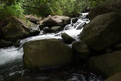 DSC_5359 (meganewens) Tags: maui iao needle sunset kaanapali lahaina hawaii digital black white waterfall