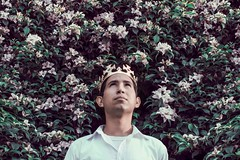 Good king (Luis Carlos Florez) Tags: foto luz corona vida sabiduria rey conceptual color arte flores photo light crown lifetime wisdom king art flowers cahaya mahkota hidup kebijaksanaan raja konseptual warna seni bungabunga luce vita saggezza re concettuale colore fiori           luiscarlosflorez